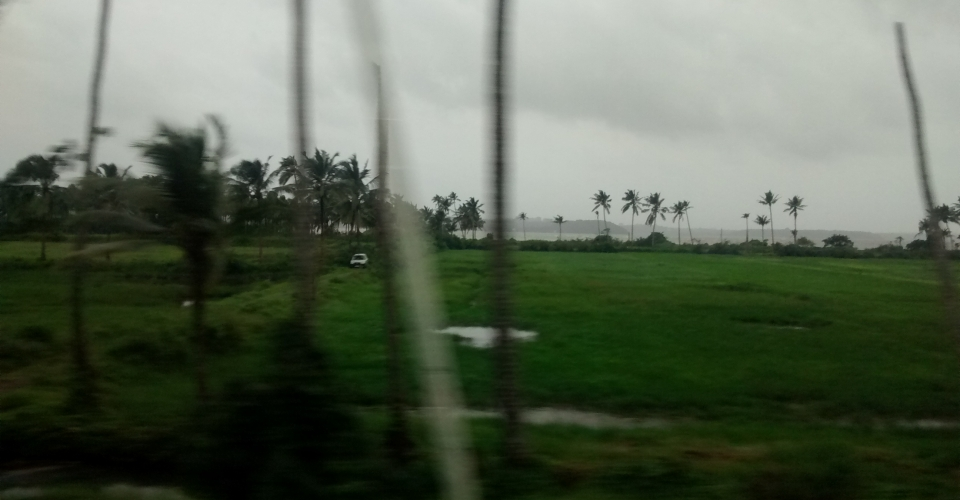 Monsoons in Goa