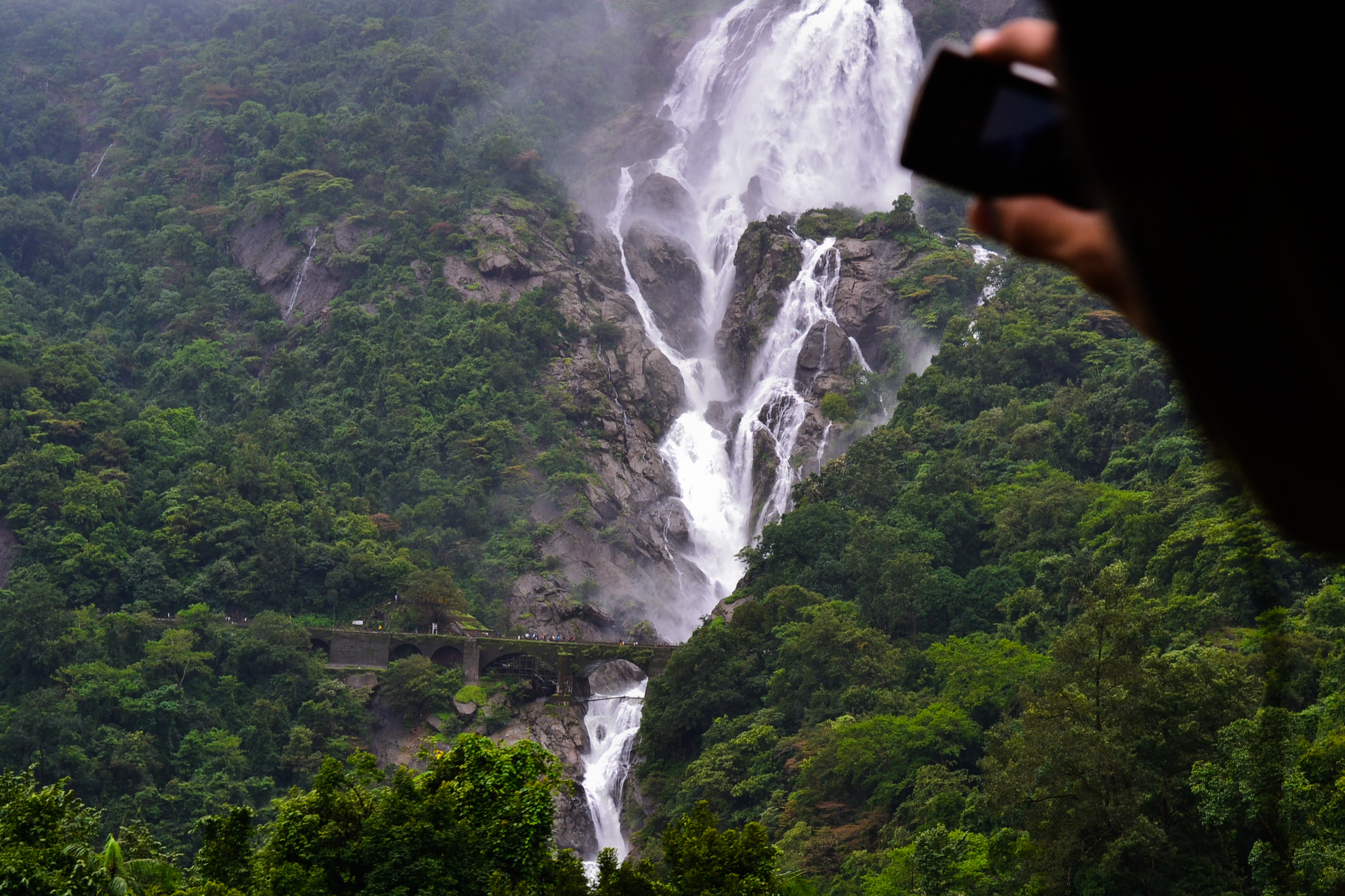 Dudhsagar from a train
