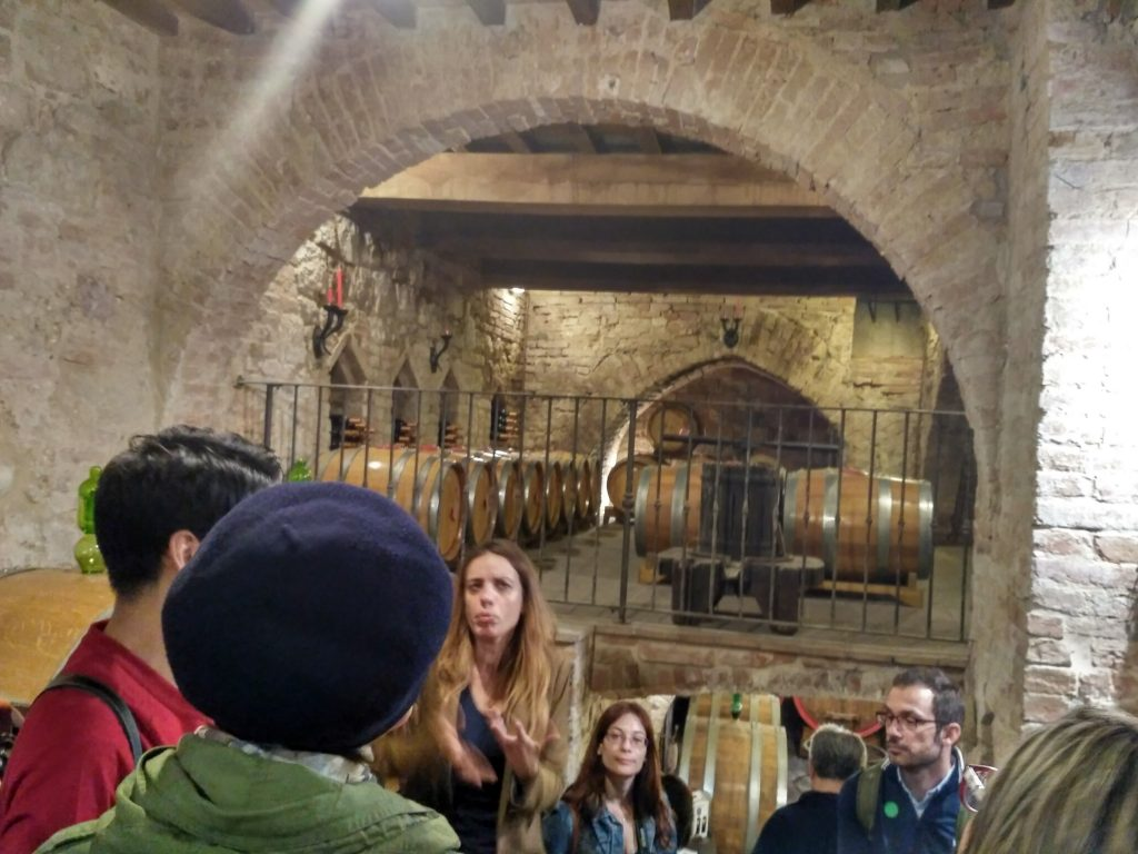 Our wine cellar guide emphasizes the importance of the right climate, soil, the time to pick grapes and the right ingredients to mix in the right wood used for the barrels that store the wine.