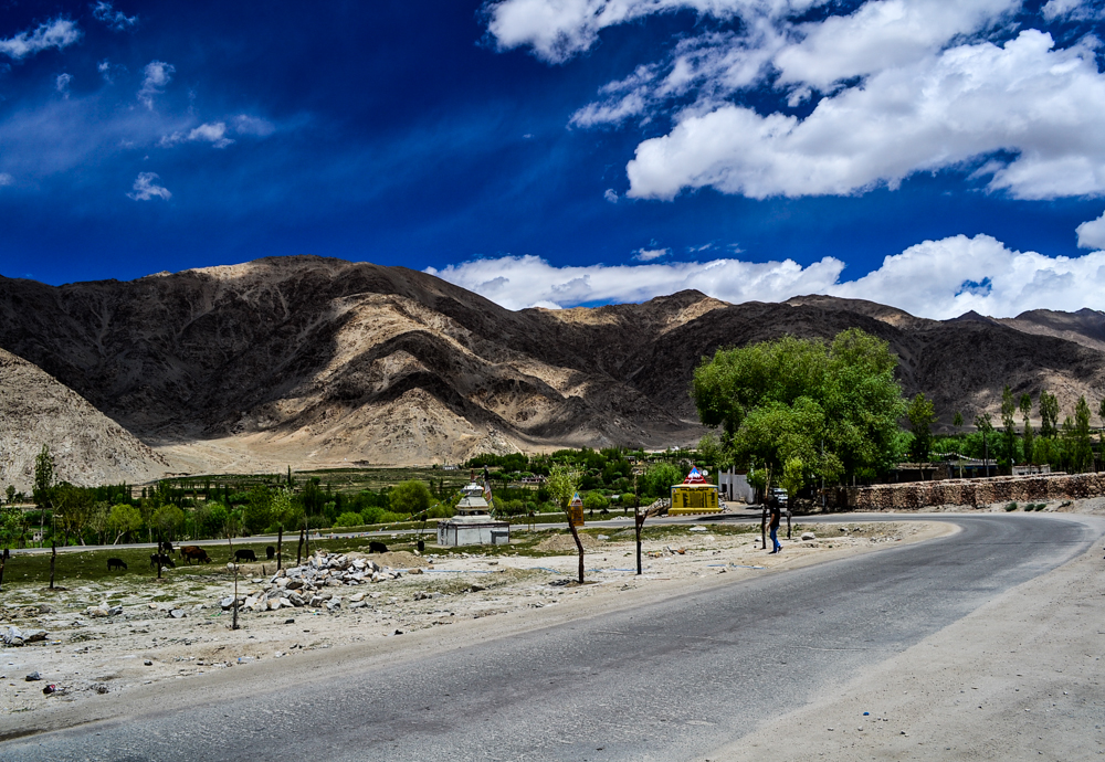 Sakthi village in Ladakh enroute the Leh-Chang La road