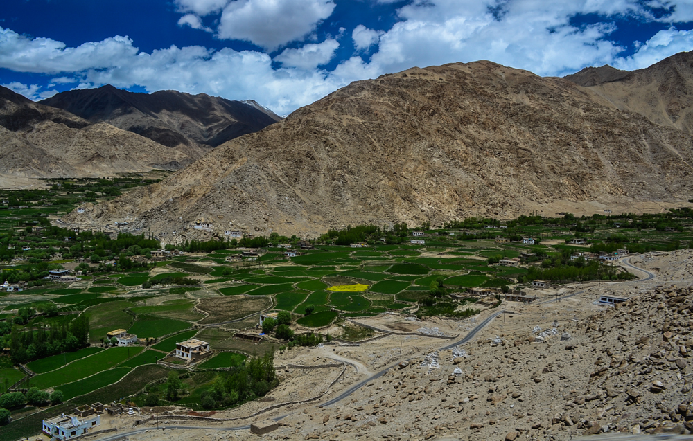Farms in Leh while climbing the Chang La pass